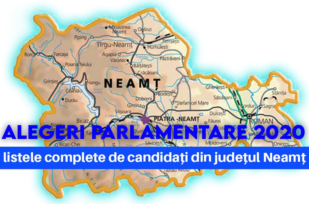 candidati alegeri parlamentare neamt 2020