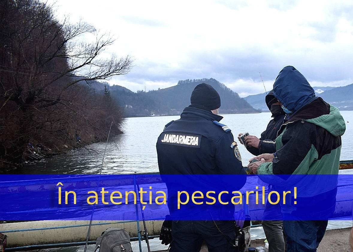 foto 1 (7) (1)